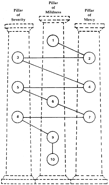 tree-of-life-schematics