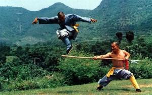 110-боевые искусства