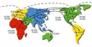22-мт-миграции