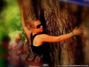 30-подпитка от деревьев