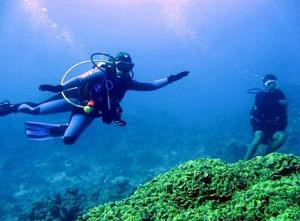58-подводное плавание