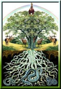 16-вероятностное будущее как дерево